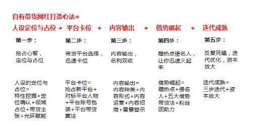 石家庄抖音代运营:罗永浩爆卖2亿:品牌打造带货网红的5大科学公式