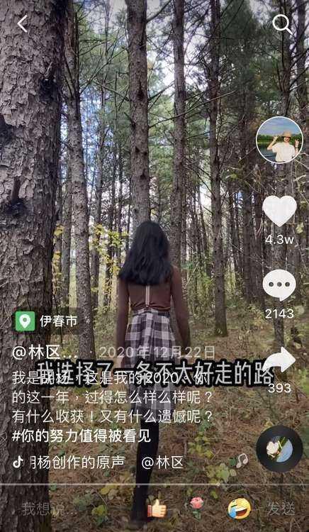 """95后女孩""""隐居""""小兴安岭采蘑菇,网友:把日子过成了诗-第3张图片-周小辉博客"""