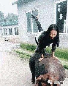 淘宝客推广开始影响搜索权重!!(狗哥)